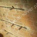Saver Profile zamontowane w spoinach, w popękanym murze. Widoczne kliny stabilizujące profile w bruzdach na czas wstępnego wiązania zaprawy.