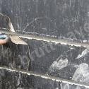 Naprawa murów fundamentowych - prawidłowe wykończenie (wygładzenie) drugiej warstwy Zaprawy Saver Powder po wklejeniu profili śrubowych w bruzdach.