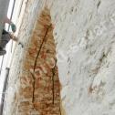 Wzmocnienie pękniętego łuku z cegły z wykorzystaniem Saver Profili - nierdzewnych profili śrubowych firmy Brutt Saver.